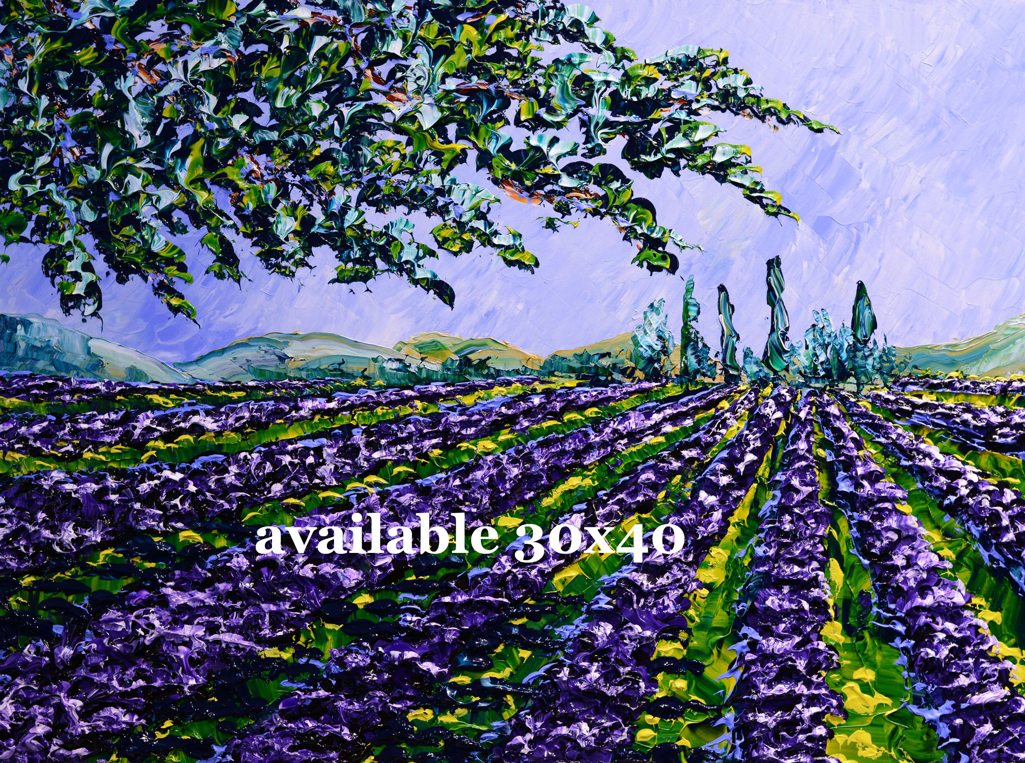 Lavender of the Bright Fields